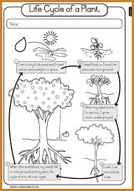plant life cycle worksheet notary letter