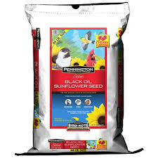 pennington select black oil sunflower seed wild bird feed 44 lbs