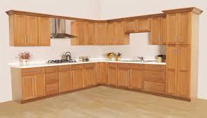 menards kitchen cabinet door hinges ghi lancaster shaker waverly cabinets kitchen cabinet