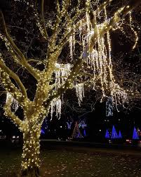 niagara falls christmas lights ontario 28 spectacular holiday light festivals you can visit in