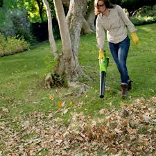 greenworks cordless leaf blower reviews the gardens of heaven