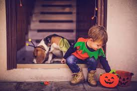 Family Friendly Halloween Party Ideas by 4 Clever Family Halloween Party Decorations U2014 5 Hour Energy Blog