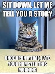 Story Meme - sit down let me tell you a story cat meme cat planet cat planet