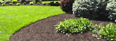 Garden Mulch Types - mulch the good the bad u0026 the ugly u2013 pinetree garden seeds