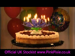 amazing birthday candle uk the most amazing birthday candle opening musical flower
