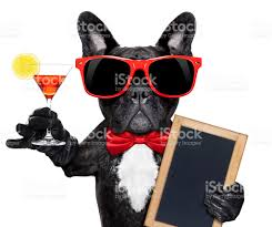 cocktail party cartoon cocktail party dog stock photo 465787896 istock