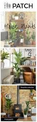 as 20 melhores ideias de best plants for bedroom no pinterest