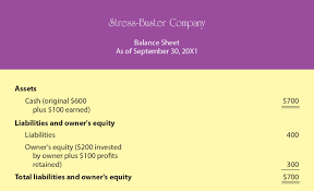 Template For Income Statement And Balance Sheet by Understanding Financial Statements