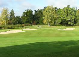 tree usage in golf course design