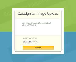 cara membuat form upload file dengan php codeigniter image and file upload formget