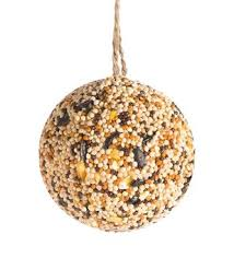 bird seed ornaments how to make bird food
