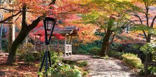 gifu u0027s top 5 autumn color spots all about japan