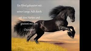 pferdesprüche pferde