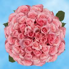 Cheap Bulk Flowers 100 Bulk Flowers Online Our Life At 31 Derful Stop And