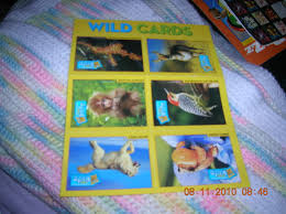 free national geographic cards other baby
