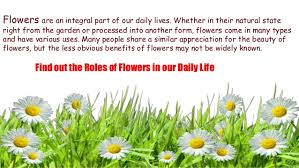 Part Of Flowers - role of flowers in our daily life