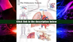 Anatomy And Physiology With Lab Online Favorite Book Human Anatomy Physiology Laboratory Manual Cat