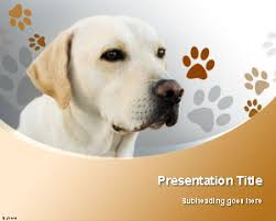 free labrador retriever dog powerpoint template is a background