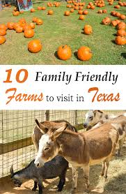 10 family friendly farms to visit in texas u2014 the titan adventures