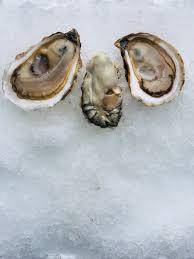thanksgiving 2017 pangea shellfish company oyster and