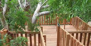 Tree House Backyard by Treehouses Custom Treehouse Builders In Northern California