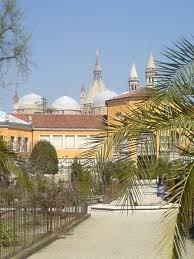 Botanical Garden Chapel Hill by Orto Botanico Di Padova Wikipedia