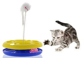 bulk buys od386 1 track cat with mouse swatter purrfect