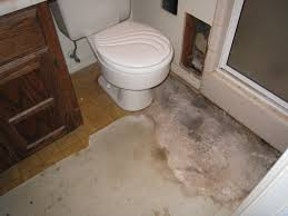 wood floor in bathroom replacing linoleum flooring in bathroom wood floors