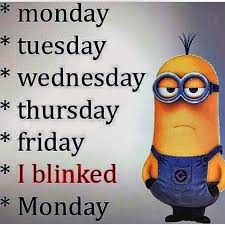 Funny Monday Memes - monday quotes funny beauteous best 25 monday memes ideas on