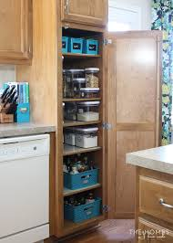 Storage Ideas For Kitchens Organize This Storage Solutions For A Skinny Pantry The Homes I