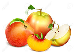 editable fruit ripe fresh fruits apples and fully editable handmade