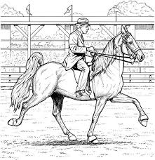 coloring pages adults dressage horse colouring pages