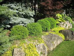 30 rock garden designs garden designs design trends premium rock garden designs