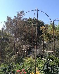 Trellis Arches Garden Rebar Garden Arch Salvage Garden Art Pinterest Garden Arches