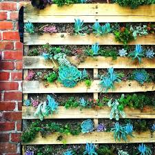 Garden Wall Art Australia - articles with succulent wall art australia tag succulent wall art