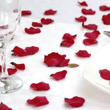 Silk Rose Petals Red Silk Rose Petals The Last Detail