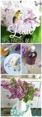 160 best flower garden u0026 gardening tips information and ideas