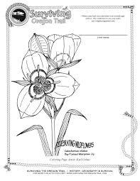 printable worksheets archives page 2 of 5 surviving the oregon
