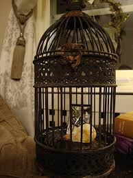 victorian gothic home decor victorian gothic crow in cage goth home from sandrahila on etsy