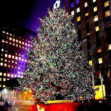 the 2015 rockefeller tree lighting 2015 kicking the