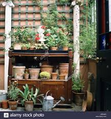 old terracotta pots on wooden freestanding shelves against garden