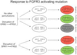 plos computational biology integrative modelling of the influence