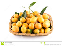 marian map marian plum fruit on white background mayongchid map