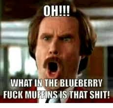 The Fuck Memes - oh what in the blueberry fuck muffinsis that shit fucking meme