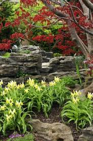 rock garden designs quick ideas and solutions