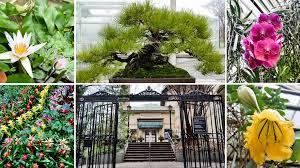 Prospect Park Botanical Garden Escape From New York A Sizzlin Winter Tour Of Botanic
