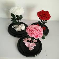 2017 most popular natural preserved flowers 9 10cm prserved rose