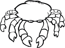 crab coloring pages 2615 850 537 free printable coloring pages