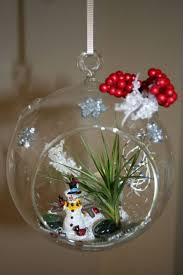 26 best terrariums images on pinterest bicycle christmas bowl