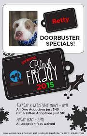 black friday pet adoption 10 u s shelters offering black
